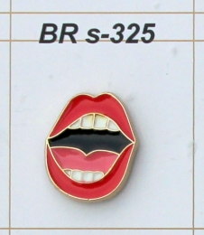 BR s-325